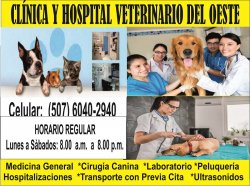 VETRINARIOS_DEL_OESTE._950_X_707_list.jpg